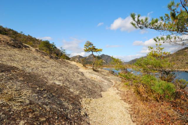 昭和池の岸辺
