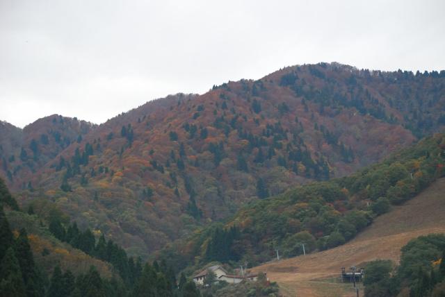 万場スキー場から見上げる大杉山
