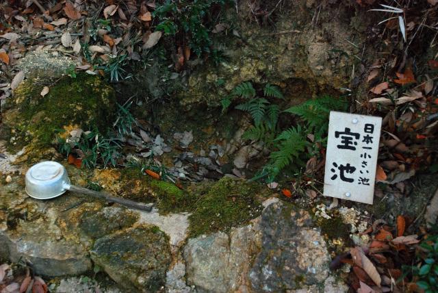 書写山_登山道_日本一小さい池_宝池