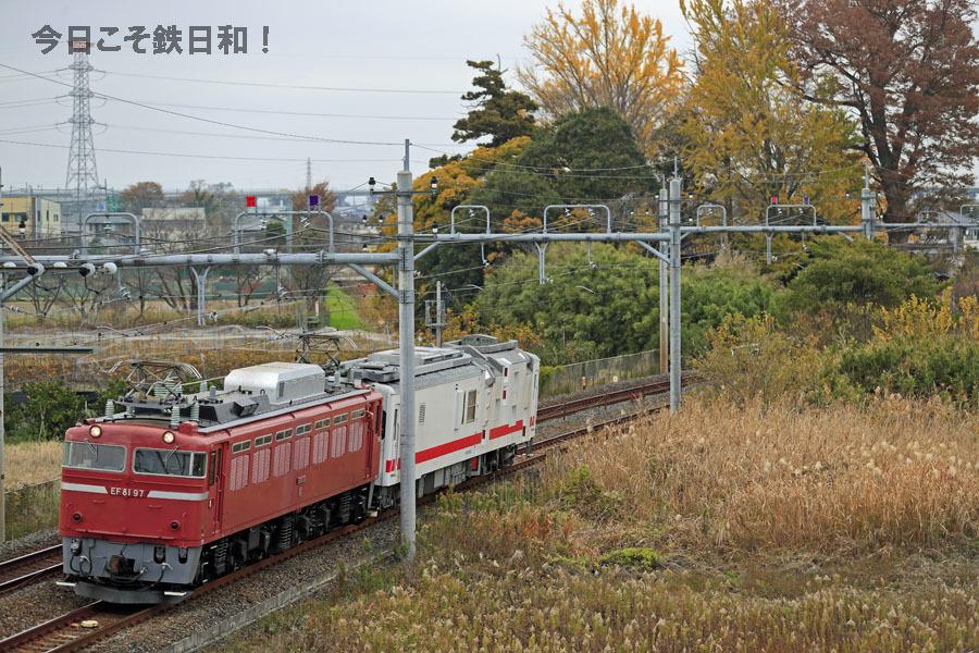 _MG_8894.jpg