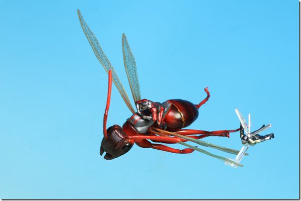 fly15