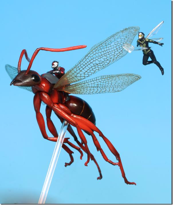 fly20