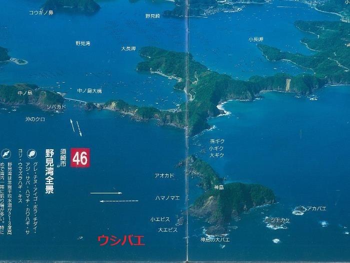 a46_野見湾全景-2