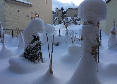 雪かき後4