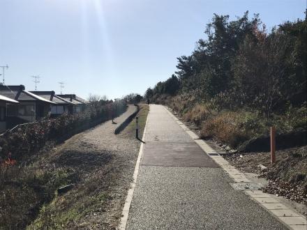 181224crosscountry running (1)