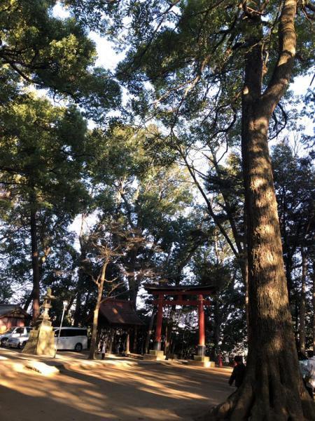 torii_convert_20190115002937.jpg