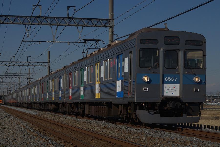 DSC_0446 -1