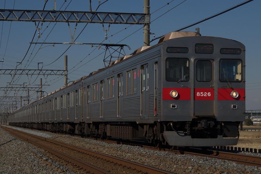 DSC_0441 -1