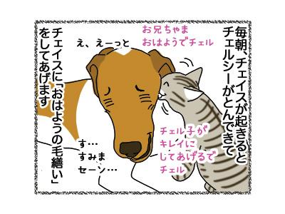 01112018_dog1.jpg