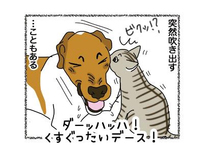 01112018_dog3.jpg