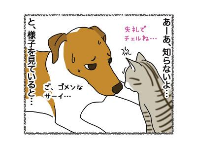 01112018_dog4.jpg