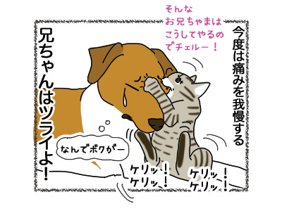 01112018_dog5.jpg
