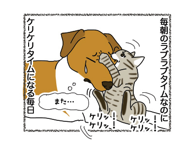 02112018_dog1.jpg