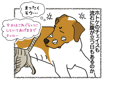 02112018_dog2.jpg
