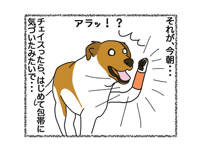 08112018_dogillustration1.jpg