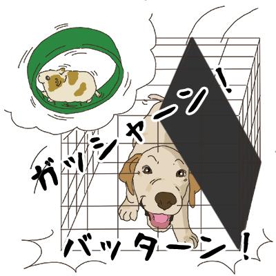 09112018_puppyYebi.jpg