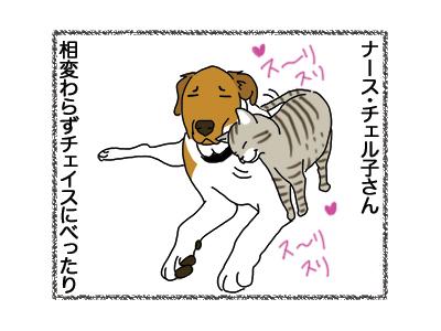 15122018_dog1.jpg