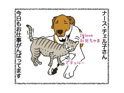 15122018_dog2.jpg