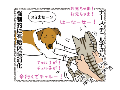 15122018_dog4.jpg