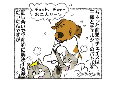 16102018_dog1.jpg