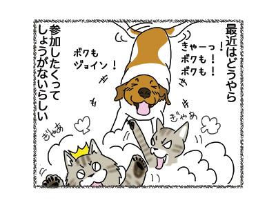 16102018_dog2.jpg