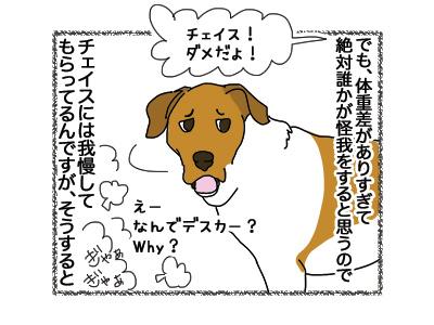16102018_dog3.jpg