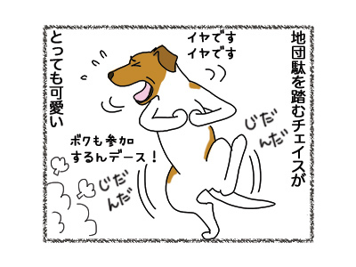 16102018_dog4.jpg
