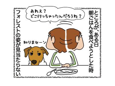 17012019_dog2.jpg