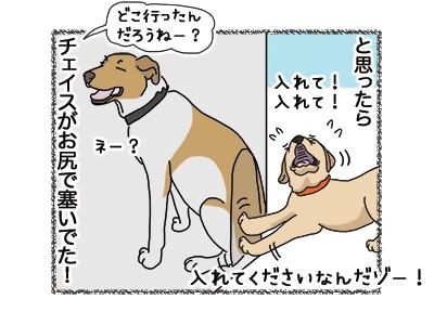 17012019_dog3.jpg