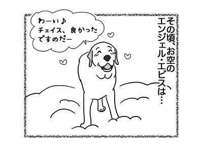 20122018_dog1.jpg