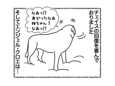 20122018_dog2.jpg