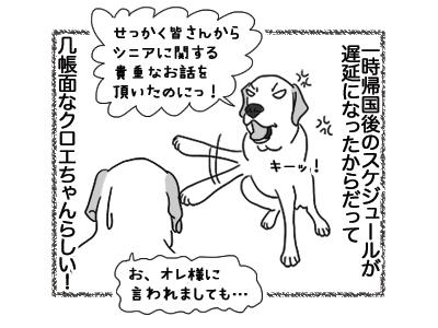 20122018_dog4.jpg