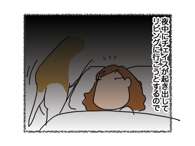 24102018_dog1.jpg