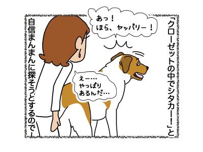 24102018_dog5mini.jpg