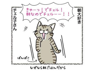 28112018_cat1.jpg