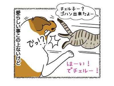 28112018_cat4.jpg