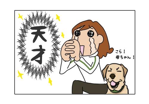 29012019_dog1.jpg