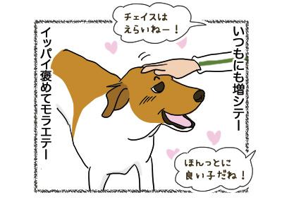 29102018_dog2.jpg