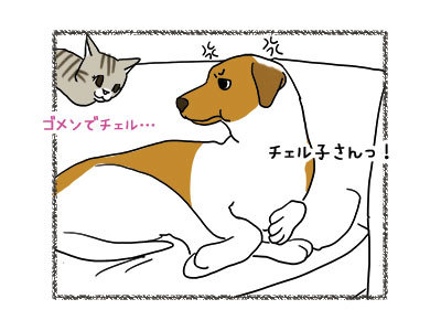 29112018_dog3.jpg