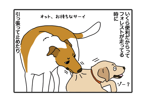 30012019_dog2.jpg