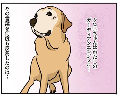 30102018_dog2.jpg