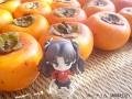 頂いた柿を撮る2