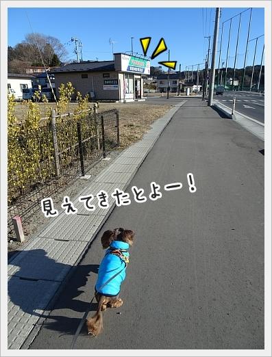 fc2_2019-01-17_05.jpg