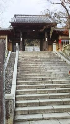 修善寺 キャバマル
