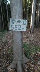 KIMG6659.jpg