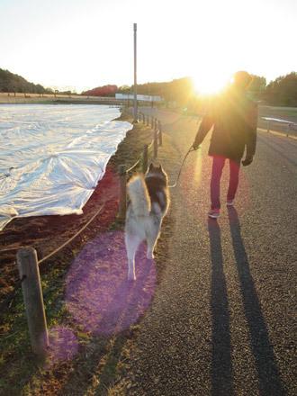 千波湖散歩