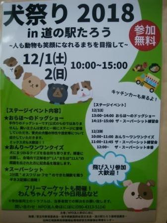 犬祭りブログ用_縮小