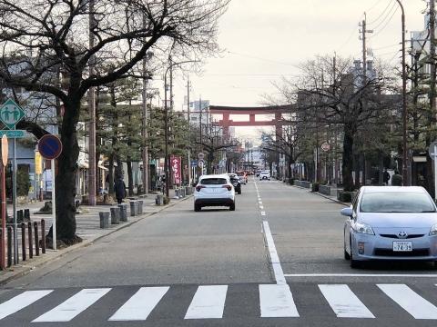 中村公園20190210(2)