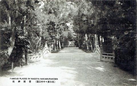 中村公園20190210(5)