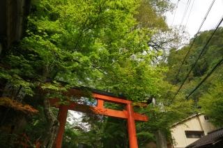 181014kibune(39).jpg